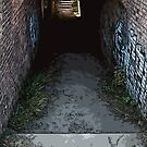 tunnel walkway by Ted Petrovits