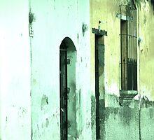 Doors (Límon) by Valerie Rosen