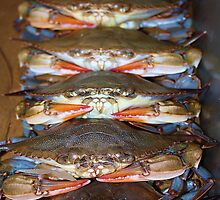 Stacked up Soft Crabs by Paulette1021