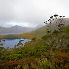 Mist over Cradle Mountain by Harry Oldmeadow