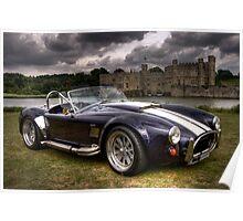 Cobra & Castle Poster