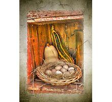Eggs 'n Veg Photographic Print