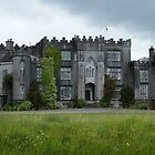 Birr Castle by Kaitlin Bush