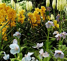 More Beauty From  The Dupont Gardens by Andrew  Bailey