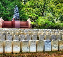Andersonville National Historic Site by Janie Oliver