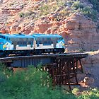 Verde Canyon Railroad by Travis Niebuhr