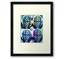 The Wallflower Heads Framed Print