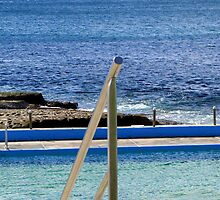 Dee Why Saltwater Pool by Janie. D