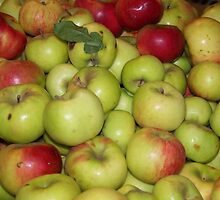 Apple Pile by Hope Grover