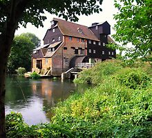 Houghton Mill by Mike Honour