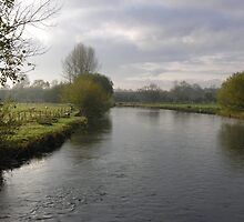A river in winter: the Itchen below St Cross, Winchester, southern England by Philip Mitchell