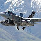 EA-18 Growler by jdmosher