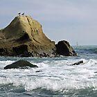 Two Gulls Gossip on a Rock by Corri Gryting Gutzman