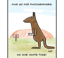 The Erosion Of Photographers  by David Stuart