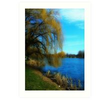 My Weeping Willow Tree ©  Art Print