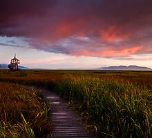 Red Sky At Night by mikewheels