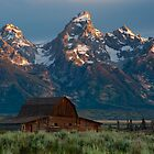 Sunrise at Mormon Row by mikewheels