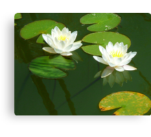 Two for the price of one - in white! Canvas Print