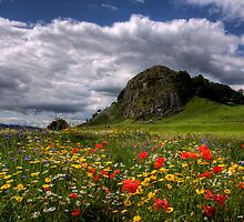 Loudoun Hill, Ayrshire. by dalepowell