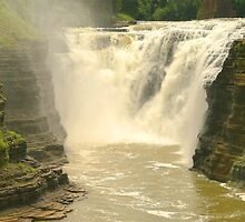 Letchworth State Park  by Jcook