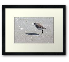 Hop-a-Long Framed Print