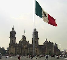 Catedral en el Zocalo del DF con la Bandera Mexicana by Christopher Johnson