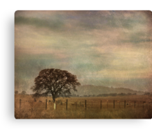 The Lonely Days Canvas Print