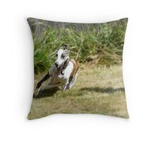 playtime in the backyard Throw Pillow