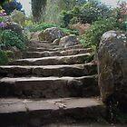 Rock garden steps by rualexa