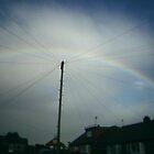 Rainbow by Suzy1