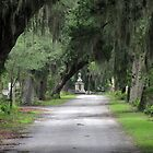 at Bonaventure Cemetery Savannah GA by Edmond J. [&quot;Skip&quot;] O&#x27;Neill