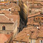 Siena - From the Campanile by Maureen Keogh