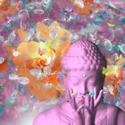 Spring Buddha by Desire Glanville AKA DevineDayDreams