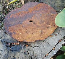 Rusty Unknown piece of Equipment by Cheryl Otto