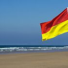 Safety Flag on Beach by Lizzylocket