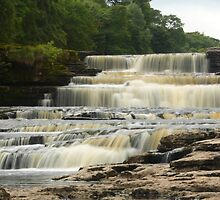 Aysgarth Lower Falls by Mat Robinson