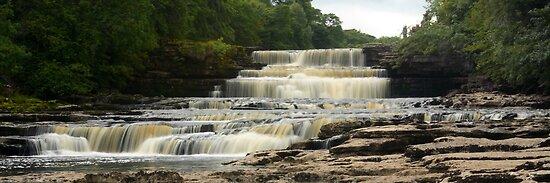 Aysgarth Lower Falls by Mat Robinson