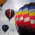 Hot Air Balloons by Rachel Slater