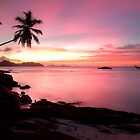 Pink sunset Ladigue, Seychelles island by Gyuri Nagy