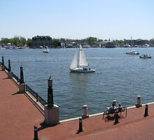 """From US Naval Academy, Annapolis, MD by Edmond J. [""""Skip""""] O'Neill"""