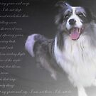 """""""In Precious Memory of Darling Mikey ..."""" by Rosehaven"""