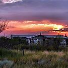 A West Texas Summer Evening by Carla Jensen