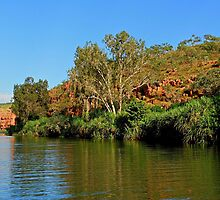 Stunning scenery in Chamberlain Gorge by georgieboy98