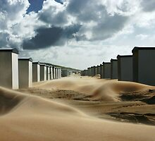 The Invasion Of The Sand by Pepijn Sauer