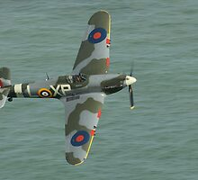 Hawker Hurricane by Shane Ransom