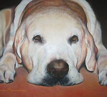 Yellow Lab by Connie Sonnenberg