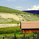 a barn in the hills by Lynne Prestebak