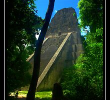 Tikal by Matt Martin
