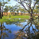 Reflections of a Billabong by Kym Howard