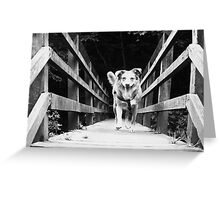 Aint No Trolls Under This Bridge Greeting Card